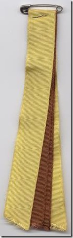 HOAC Brownsea Patrol Ribbon 1